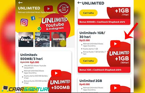 Unlimited+ 1GB
