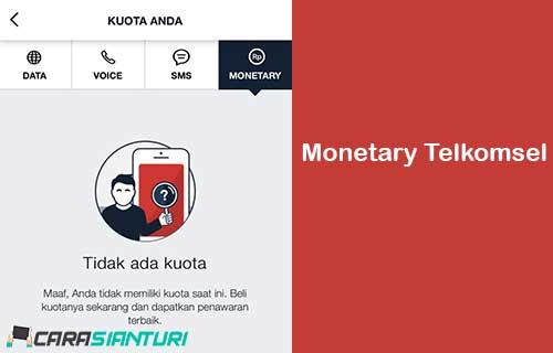 Monetary Telkomsel